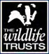 The Wildlife Trusts - external link